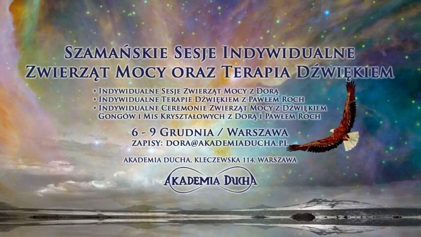 gru-6-szamanskie-sesje-indywidualne-zwierzat-mocy-i-terapia-dzwiekiem