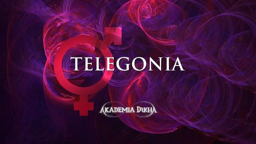 bener_-_telegonia