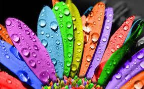 magia kolorów