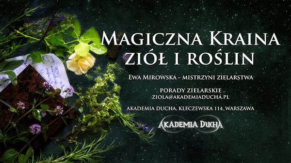baner - Ewa Mirowska - zioBa v3 (Custom)
