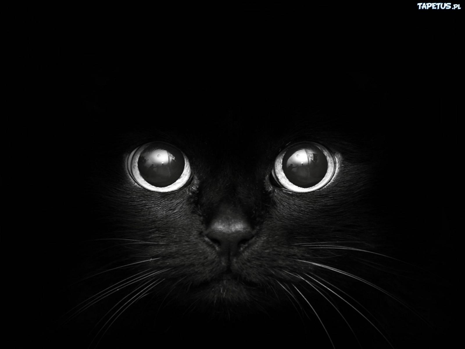 Energie kolorów – Czarny