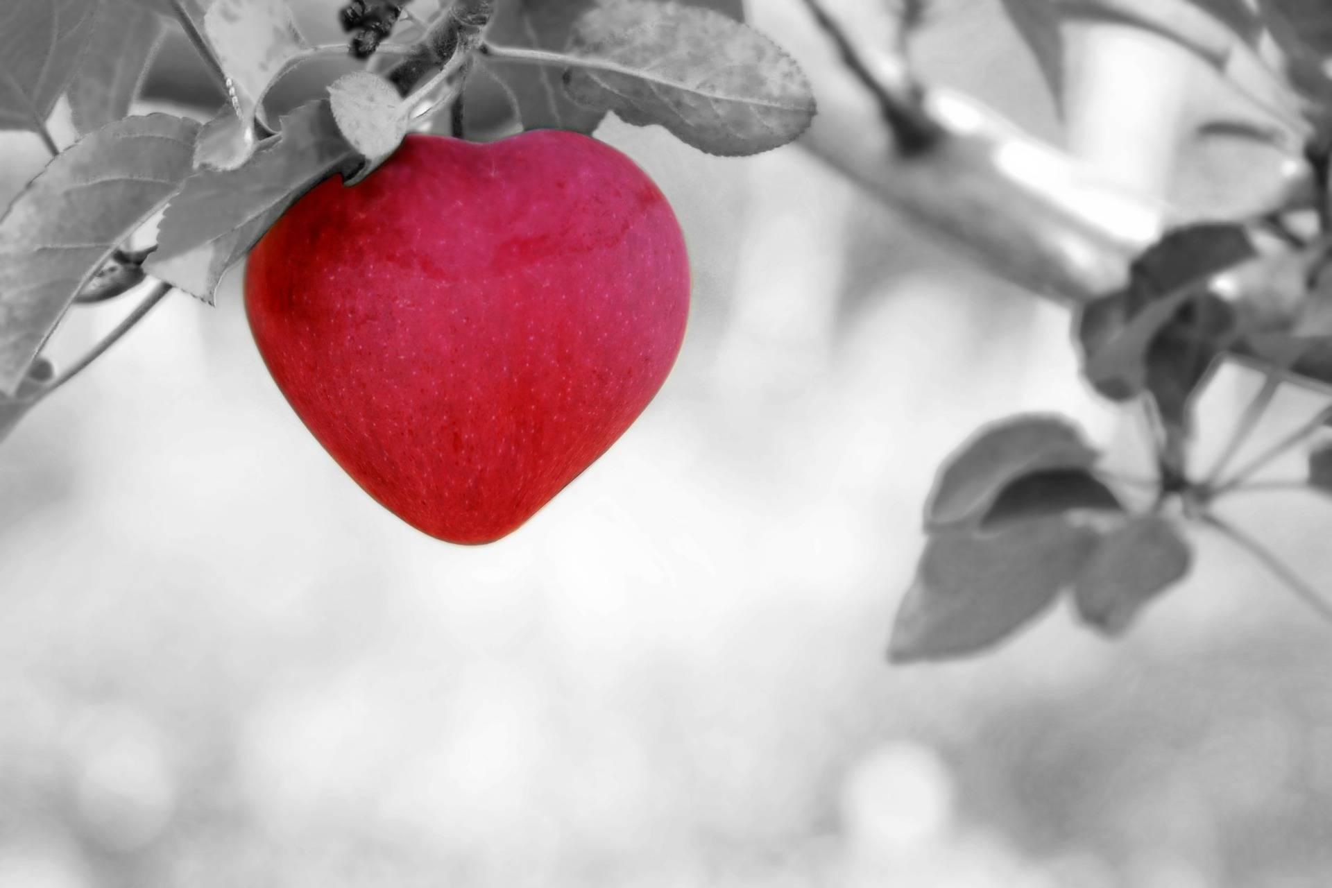 Miłość ponad ego