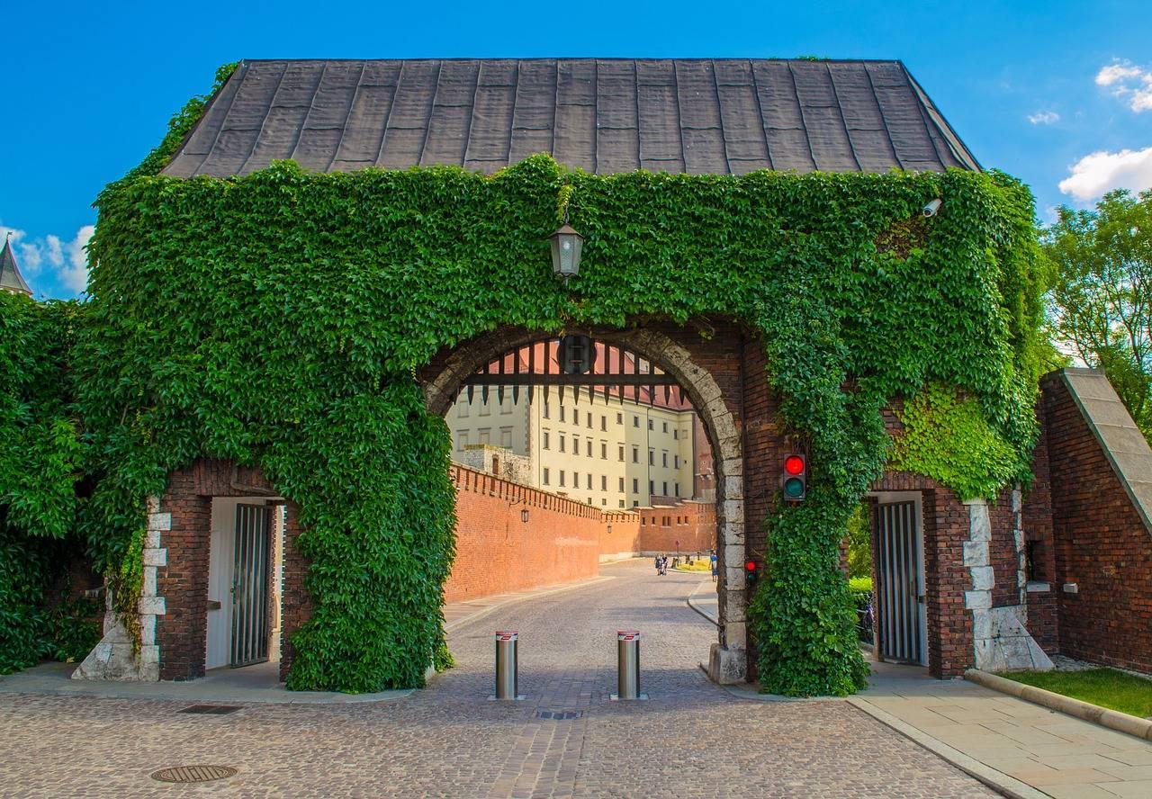 Miejsce mocy – Wawel