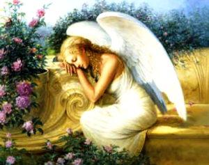 ANGELES8