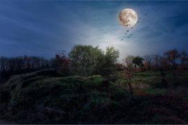 landscapes-1750128_1280