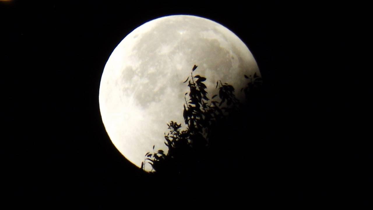 Czerwcowy Księżyc