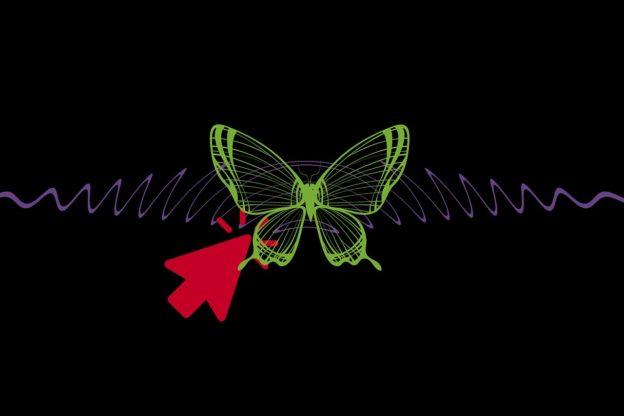 spotykać się z motylem społecznym