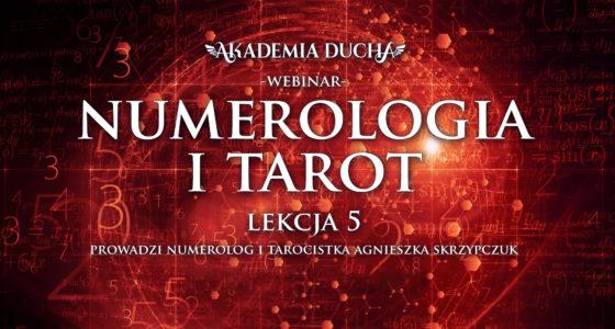 numerologia tarot