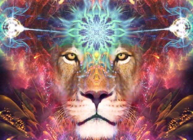 Otwarcie Bramy lwa
